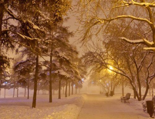 В Беларусь идут сильные морозы
