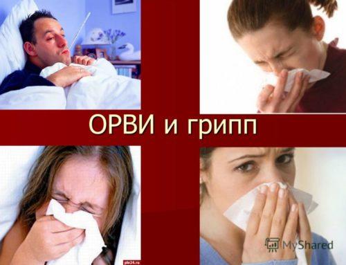 День профилактики гриппа и ОРЗ