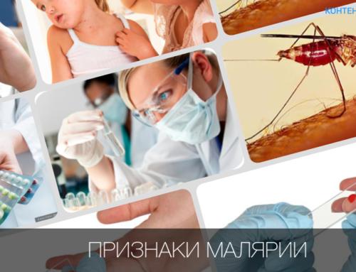 Всемирный День борьбы с малярией